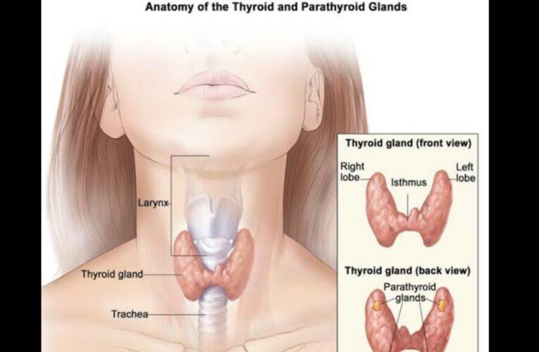 Hyperthyroidism in hindi